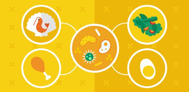 Mikrobiologische Gefahren