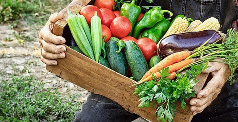 Study: Consumers trust farmers