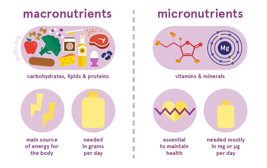 the difference between macronutrients and micronutrients