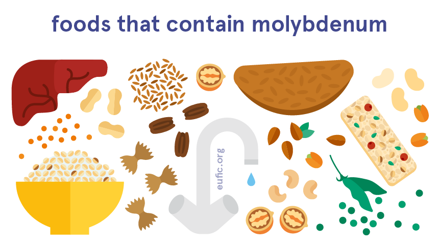 Foods that contain molybdenum
