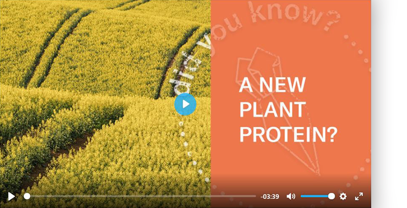 Polish biotech start-up produces zero-waste rapeseed protein in sustainability breakthrough