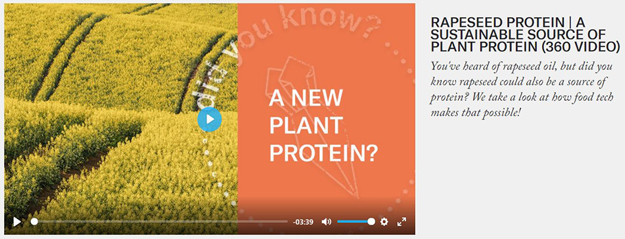 Future Kitchen rapeseed protein