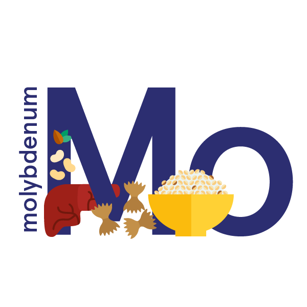 Molybdenum: foods, functions, how much do you need & more