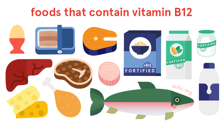 Foods that contain vitamin B12