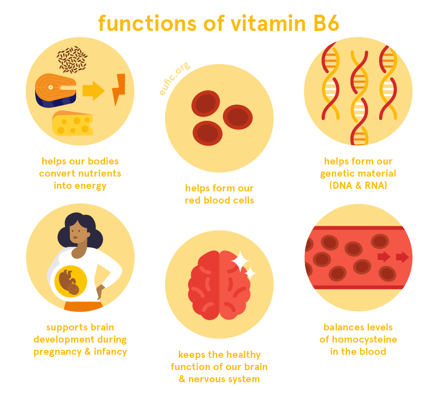 functions of vitamin B6