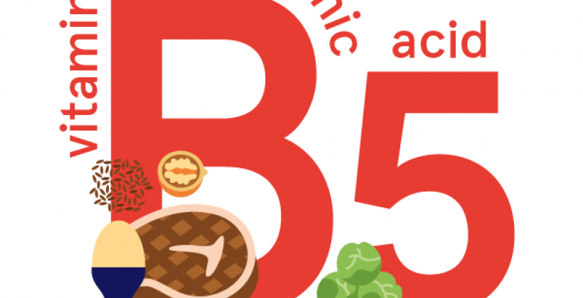 Pantothenic acid (vitamin B5): foods, functions, how much do you need & more