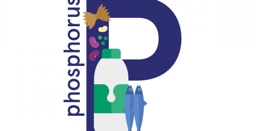 Phosphorus: foods, functions, how much do you need & more