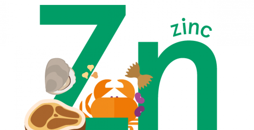 Zinc: Foods, Functions, How much do you need & more