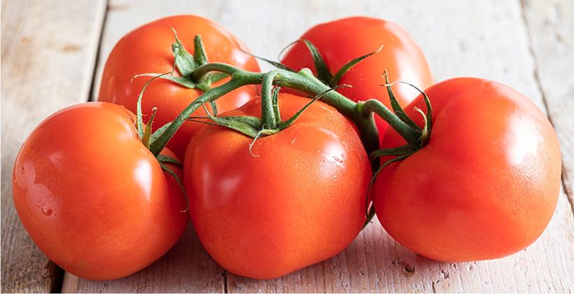 Pomodori: tipologie, proprietà e ricette. Come cucinarli e gustarli al meglio