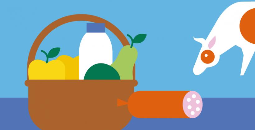¿Qué implicaciones tiene el cambio climático en la seguridad de los alimentos?