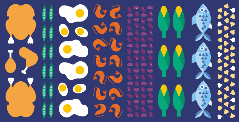 ¿Qué son las proteínas y cuál es su función en el cuerpo?
