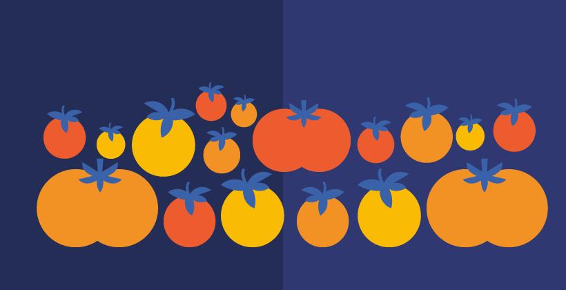 El origen de los tomates
