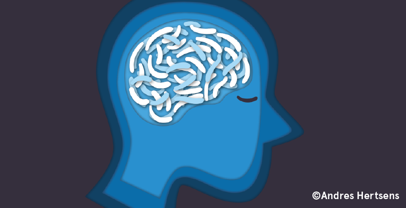 L'intestin, notre deuxième cerveau