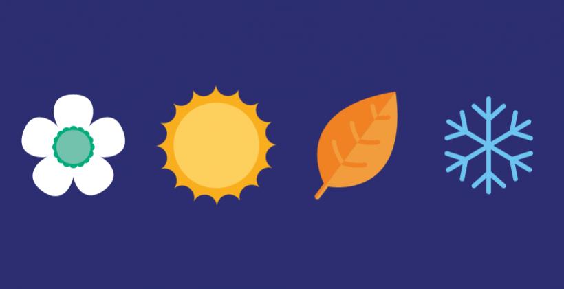 Les fruits et légumes saisonniers sont-ils meilleurs pour l'environnement ?