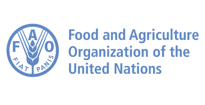 Spotlight on… Food and Agriculture Organization (FAO)