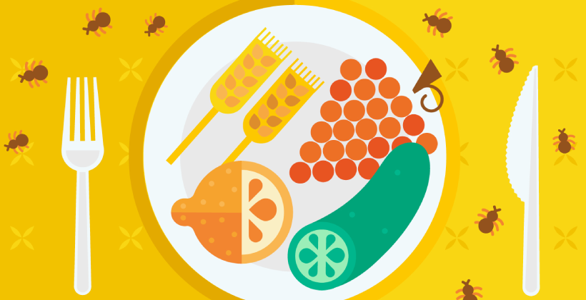 Pesticides and health (Q&A)
