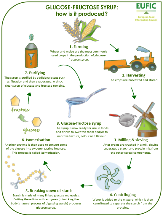 Glucose Fructose Infographic: (EUFIC)
