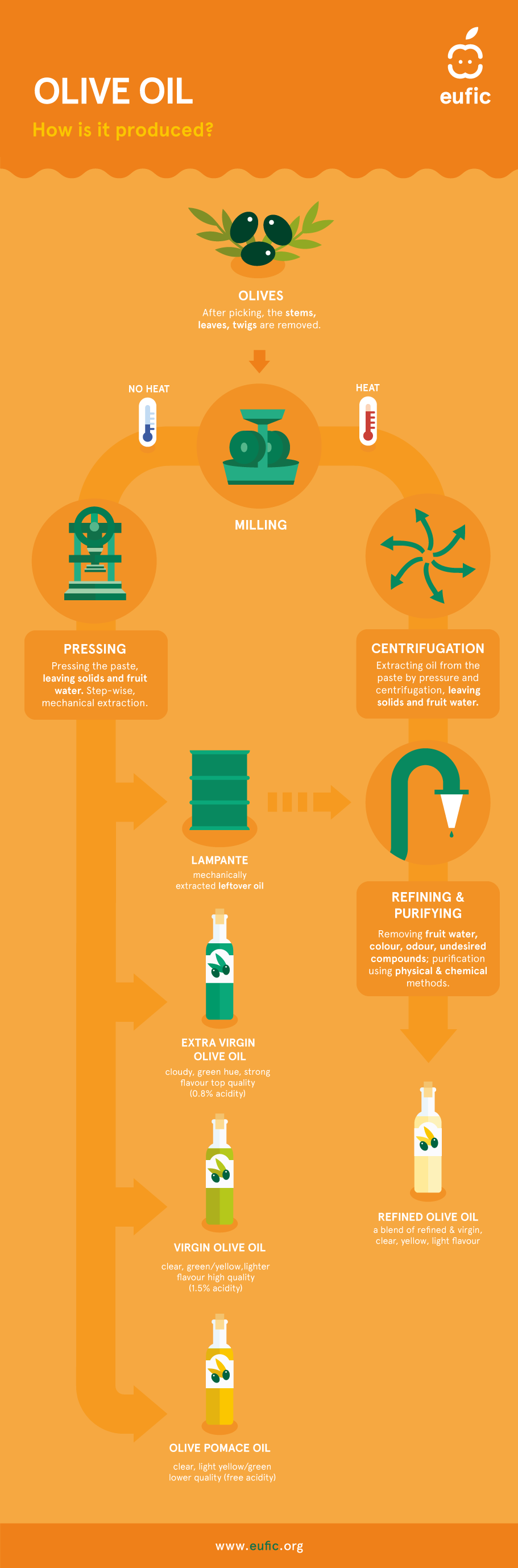 Olive Oil Infographic: (EUFIC)