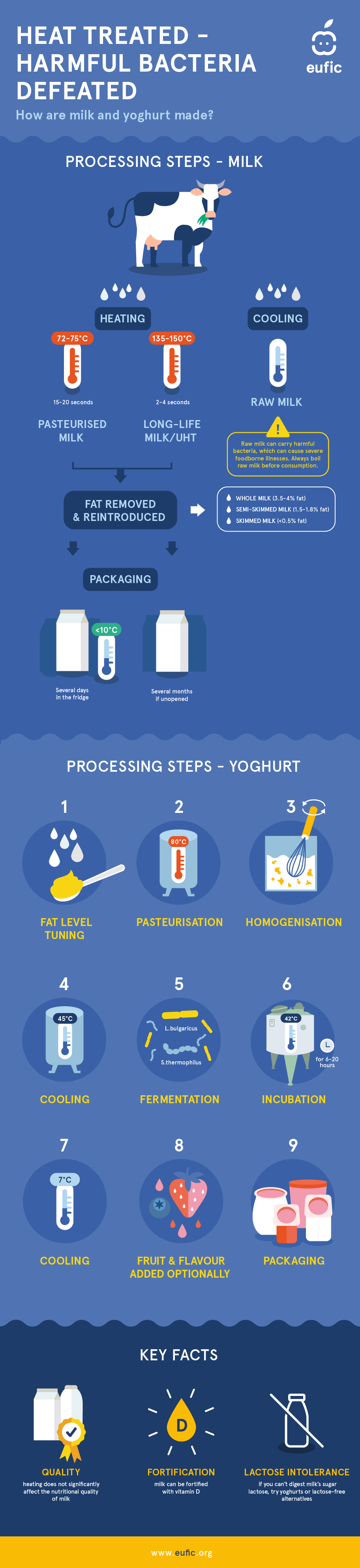 The processing steps of milk and yoghurt