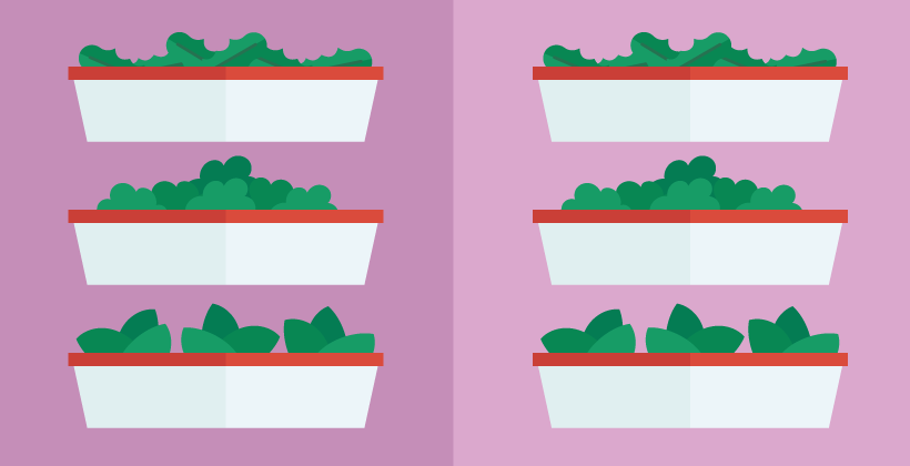 Vertical Farming – what's the deal anyway?