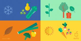 Praktische Tipps für eine gesunde und nachhaltige Ernährung
