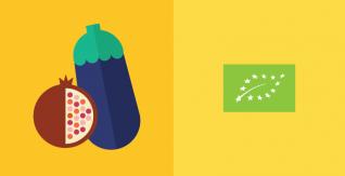 Organic plant-based food