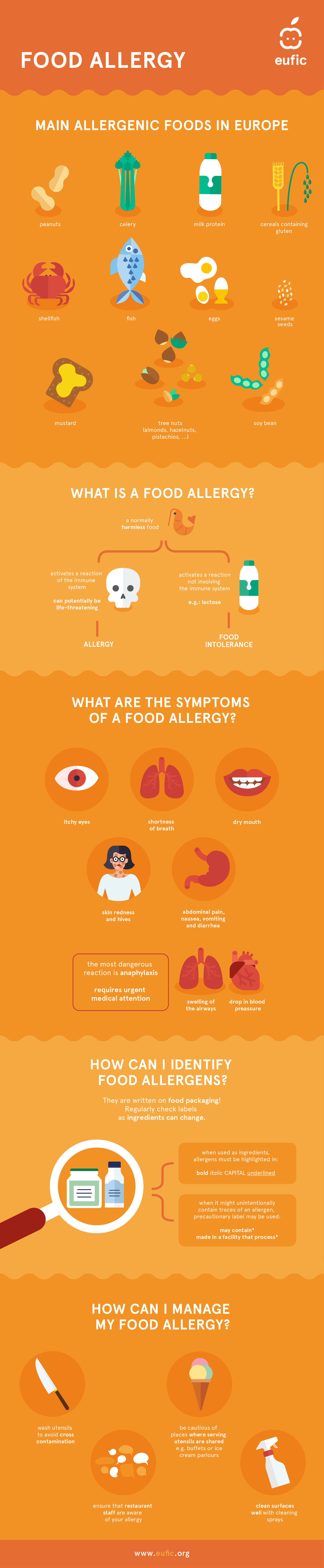 Infographic about food allergies and how to manage them