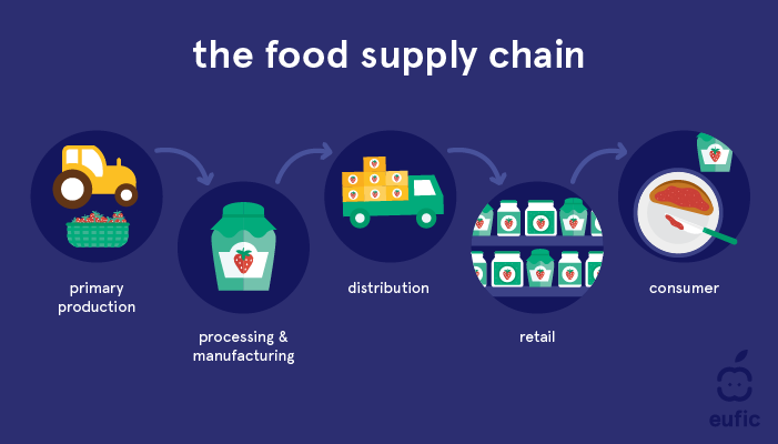 The Food Supply Chain