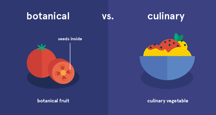 botanical vs culinary classification of tomatoes