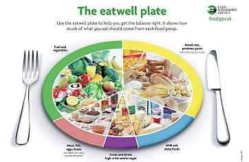 The eatwell plate UK