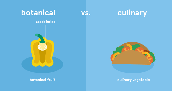 botanical vs culinary classification of peppers