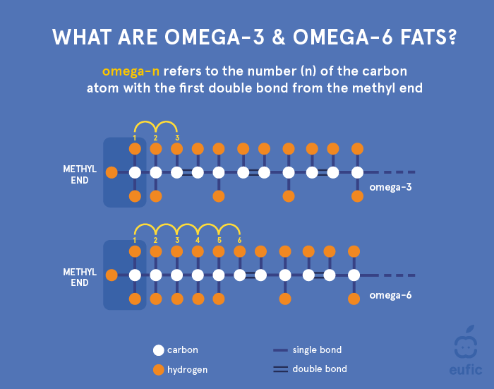 Structure of an omega-3 and omega-6 fatty acid