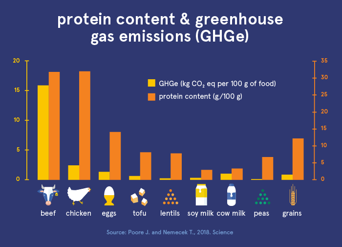 protein content of foods linked to greenhouse gas emissions produced