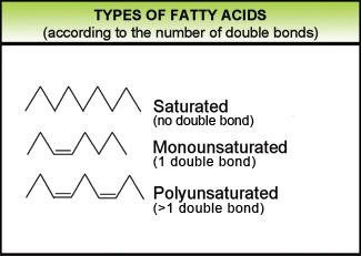 In Which Types Of Food Are Trans Fatty Acids Found Naturally