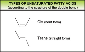 types of unsaturated fatty acids