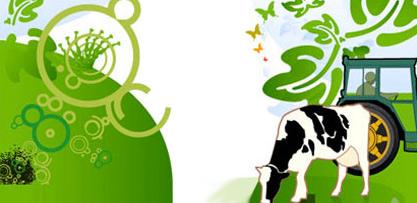 From Farm to Fork: Dalle materie prime agli alimenti - Maggiore durata e maggiore sicurezza