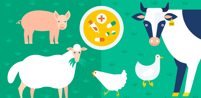 Malattie degli animali