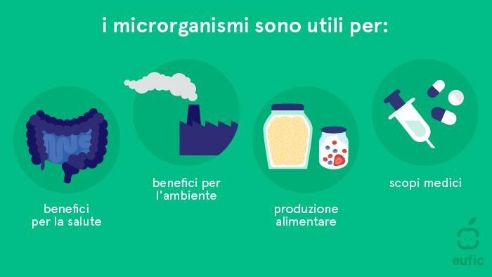 A cosa servono i microrganismi